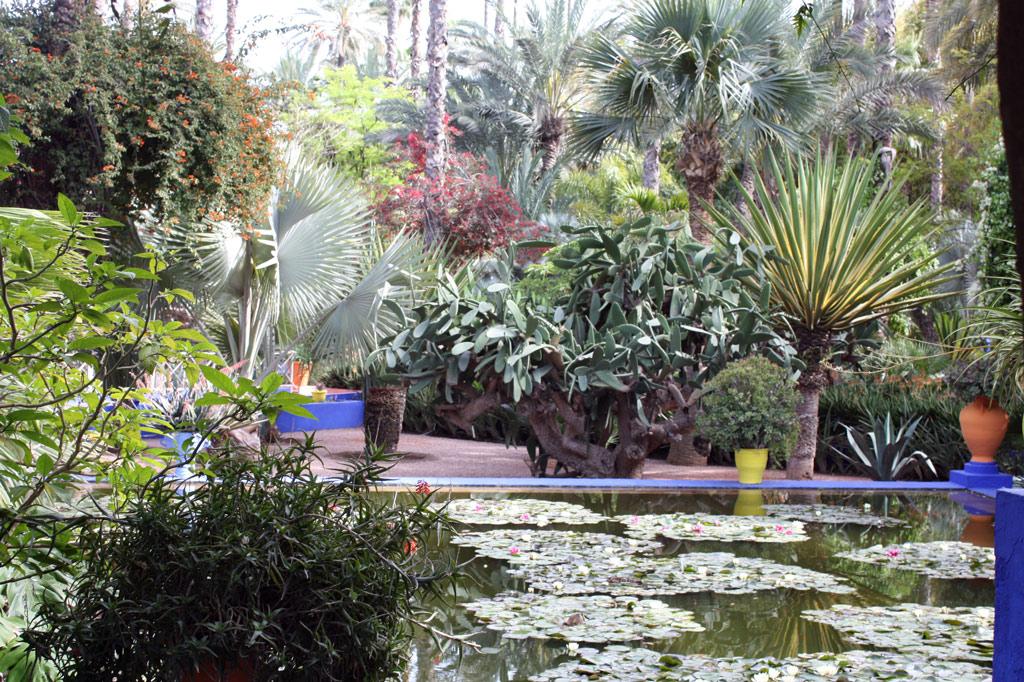 majorelle garden - Majorelle Garden
