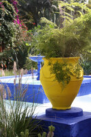 Medium majorelle marrakesh original