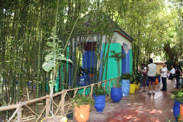 Bamboo, Jardin Majorelle