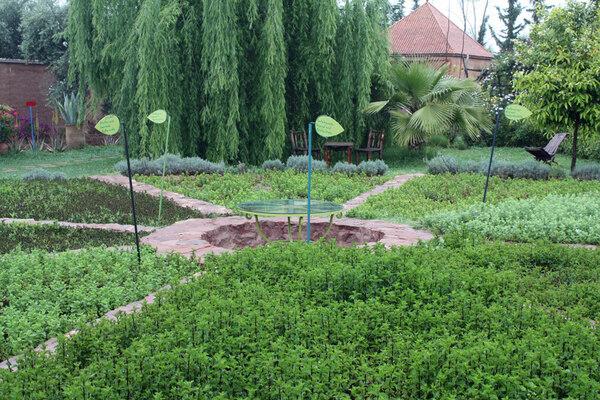 Jardin Bio-Aromatique D'Ourika