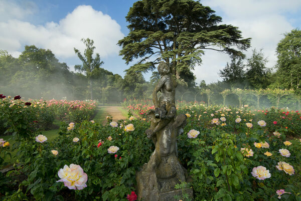 Rose Garden and Statue, Blenheim Palace Garden