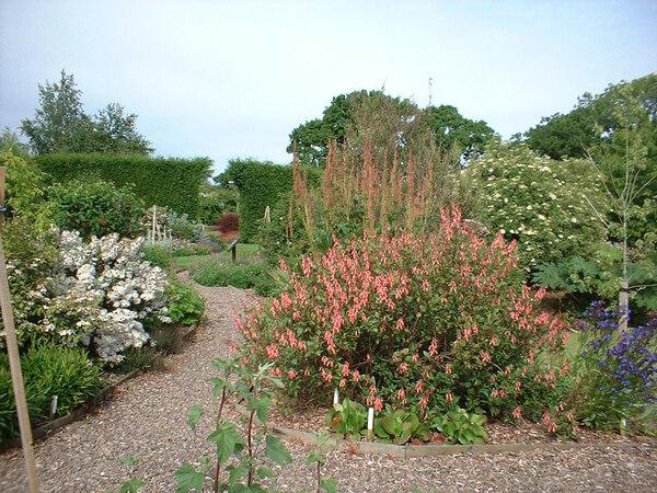 Longframlington Gardens, Northumberland