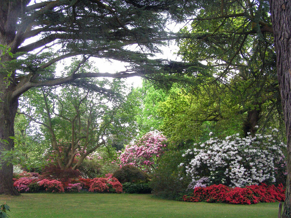 Exbury Gardens, Hampshire