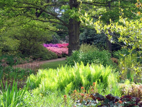 Isabella Plantation Garden, 2009