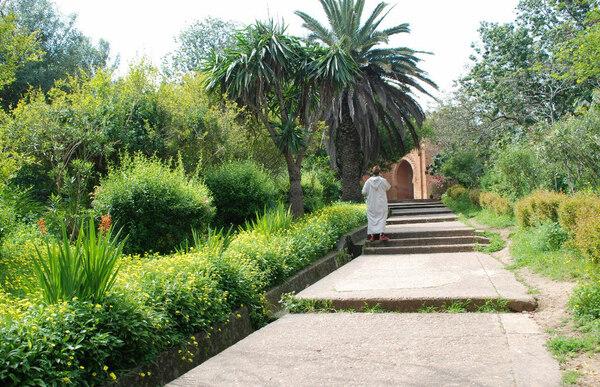 Chellah Garden, 2009