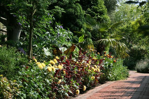 Tropical Border, The Salutation