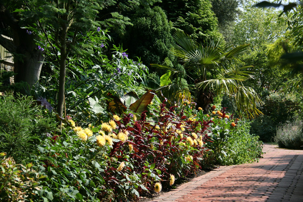 Tropical Border, The Salutation