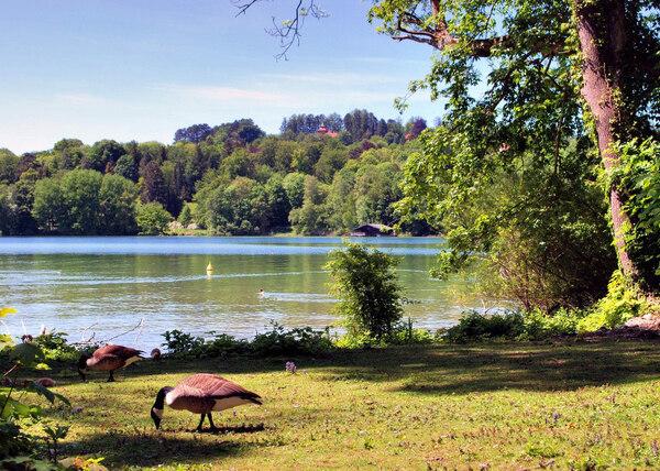 Lake Starnberg, Feldafing Park