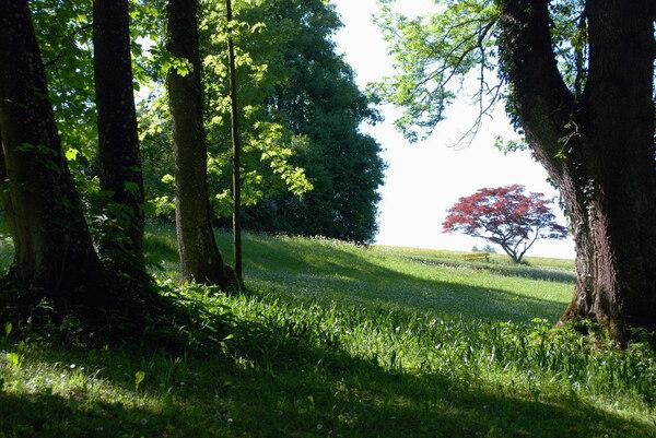 Hoehenried Schlosspark