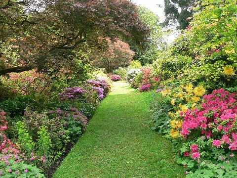 Ramster Garden, 2009