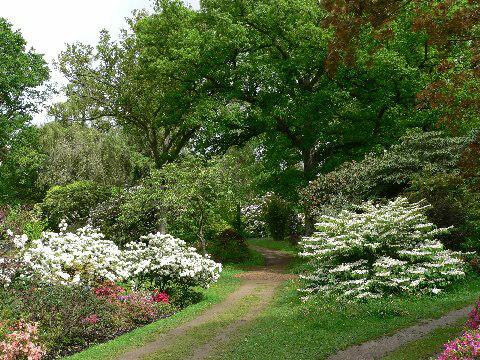 Ramster Garden, May