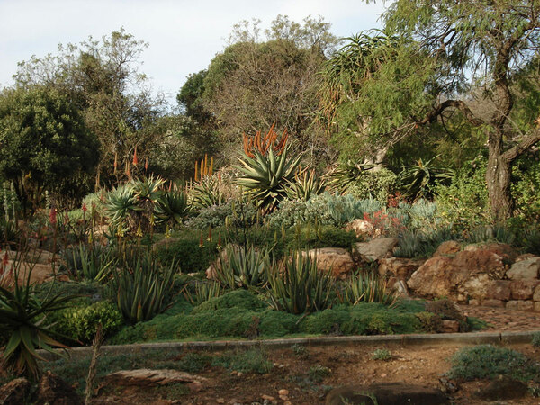 Walter Sisulu National Botanic Garden, 2009