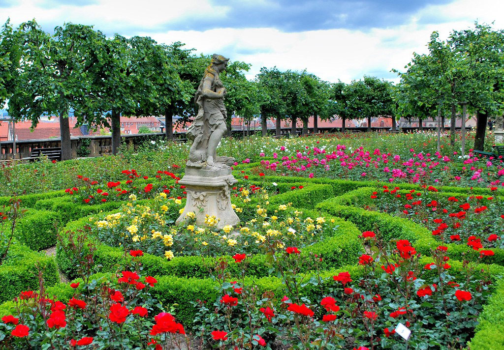 Bamberg rose garden for Garden pictures