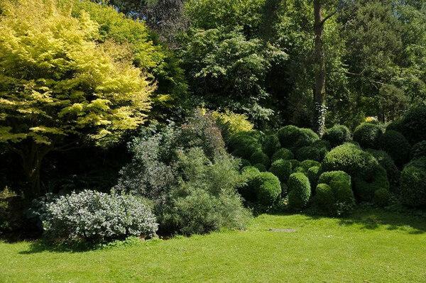 Saling Hall Garden, Summer
