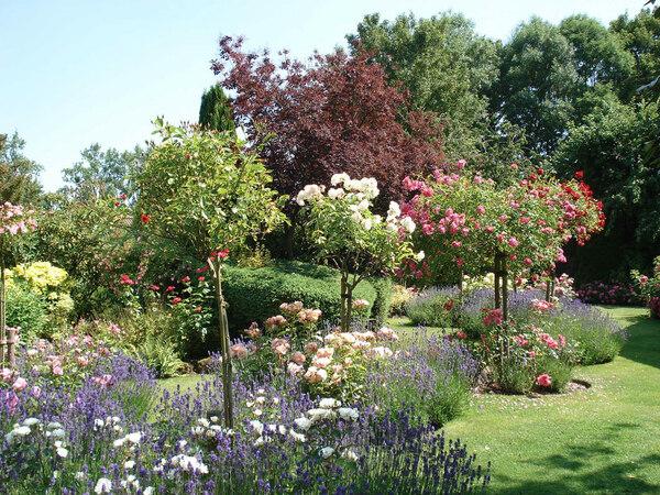 Roses, Jardin Floral du Chateau de Digeon