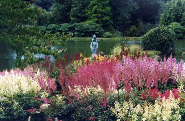 Marwood Hill Garden, Devon