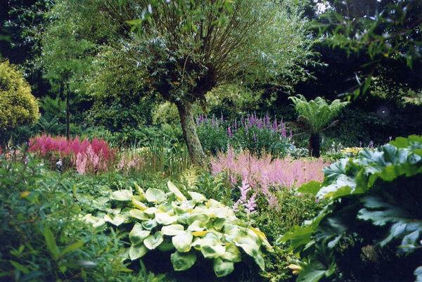 Marwood Hill Garden, Barnstaple