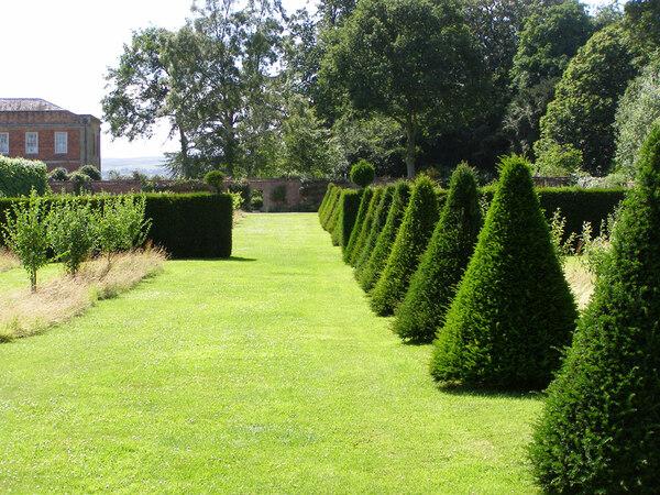 Hedges, Erddig Garden