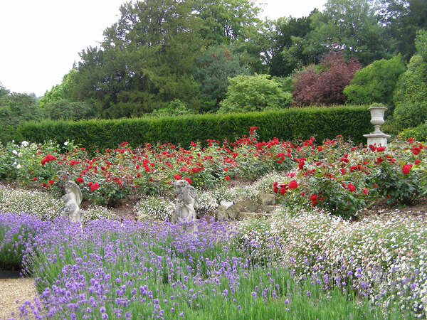 Rose Garden, Titsey Place