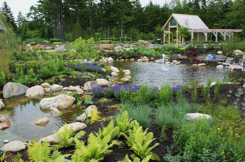 Ponds, Coastal Maine Botanical Gardens