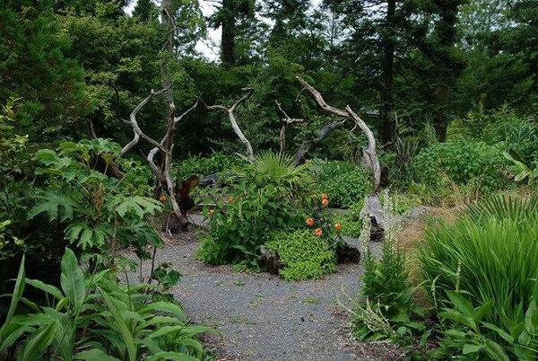 Picton Castle Garden, 2009