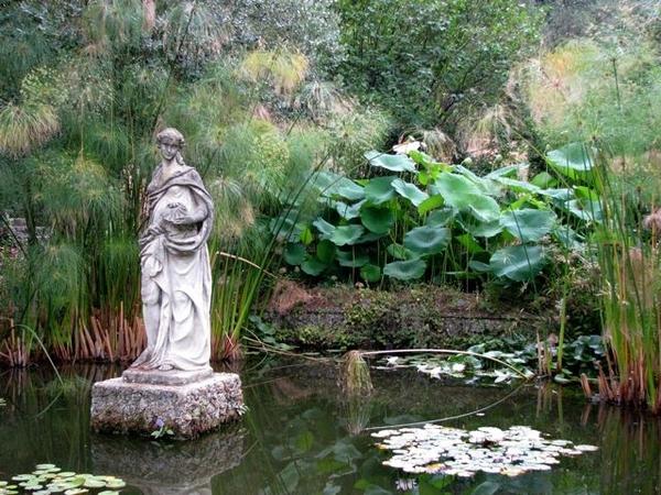 Pond, Serre de la Madone