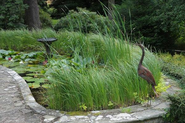 Pond, Brobury House Gardens