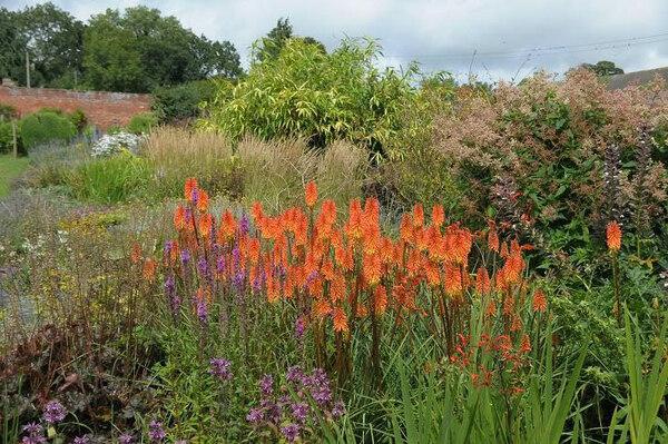 Croft Castle Garden, Summer