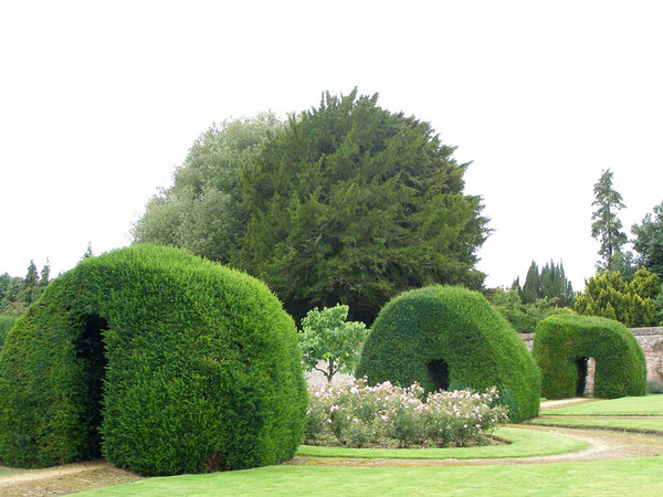 Hedges, Highclere Castle Garden