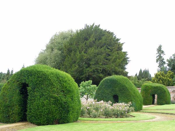 Hedges, Highclere Castle Garden