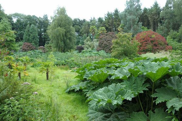 Penrhyn Castle Garden, 2009
