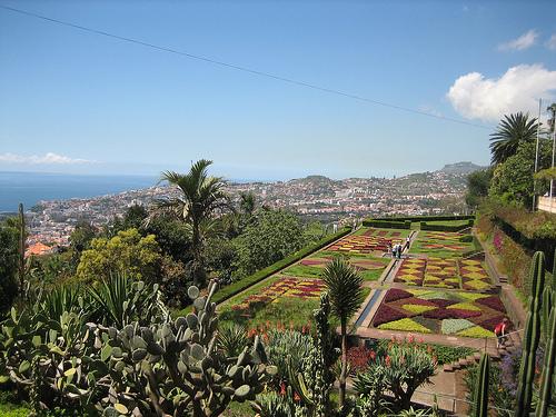Botanic Garden, Madeira