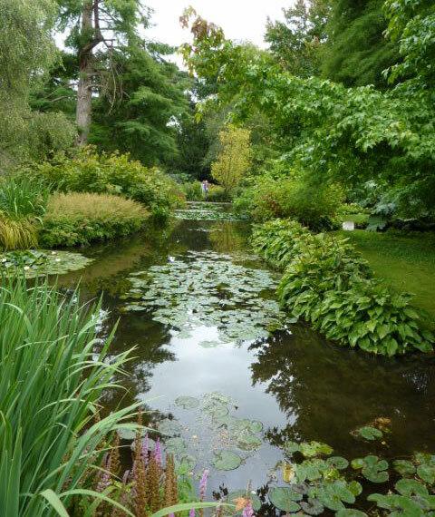 Longstock Park Water Gardens