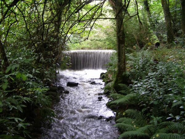 Parc Glynllifon, Caernarfon
