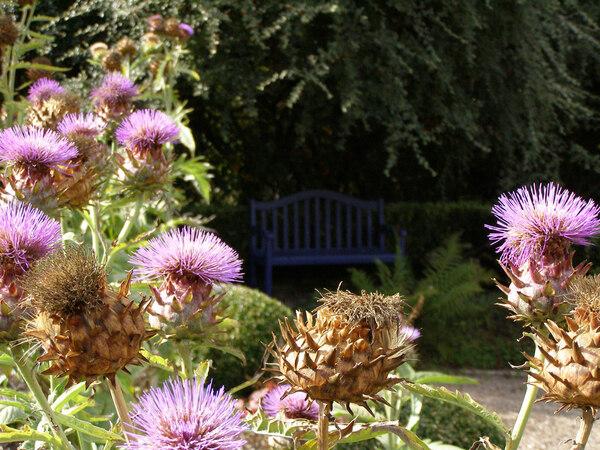 Bench, Veddw House Gardens