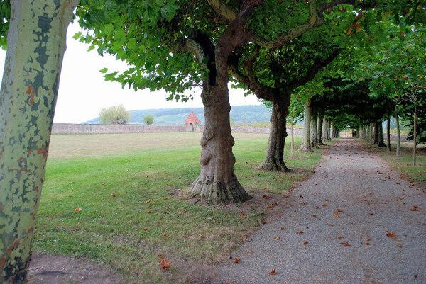 Léonardsau Park, France