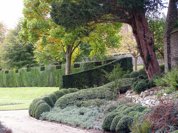 Hedge, West Dean Gardens