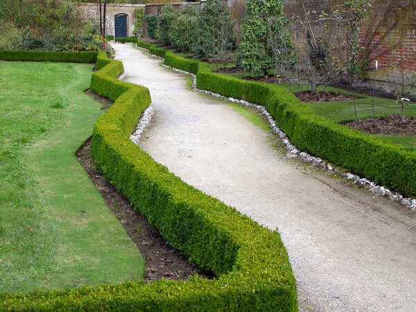 Path, West Dean College Gardens