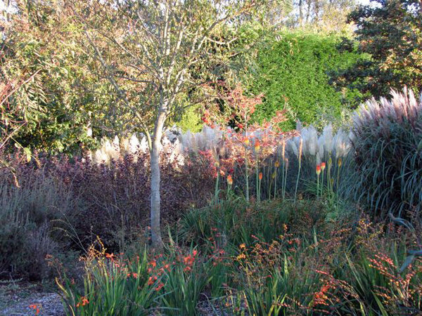 Sir Harold Hillier Gardens and Arboretum, Hampshire