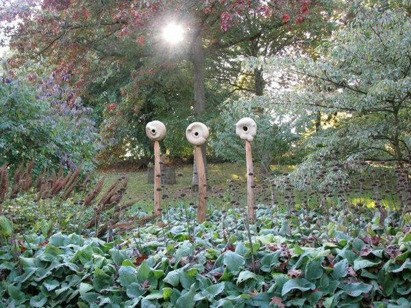 Sir Harold Hillier Gardens and Arboretum, October