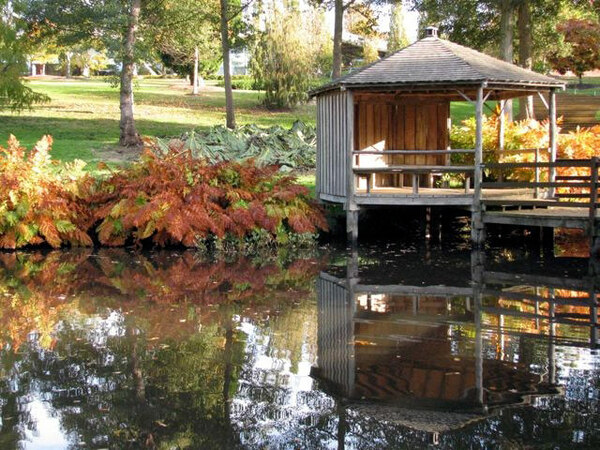 The Savill Garden and Valley Garden, Autumn