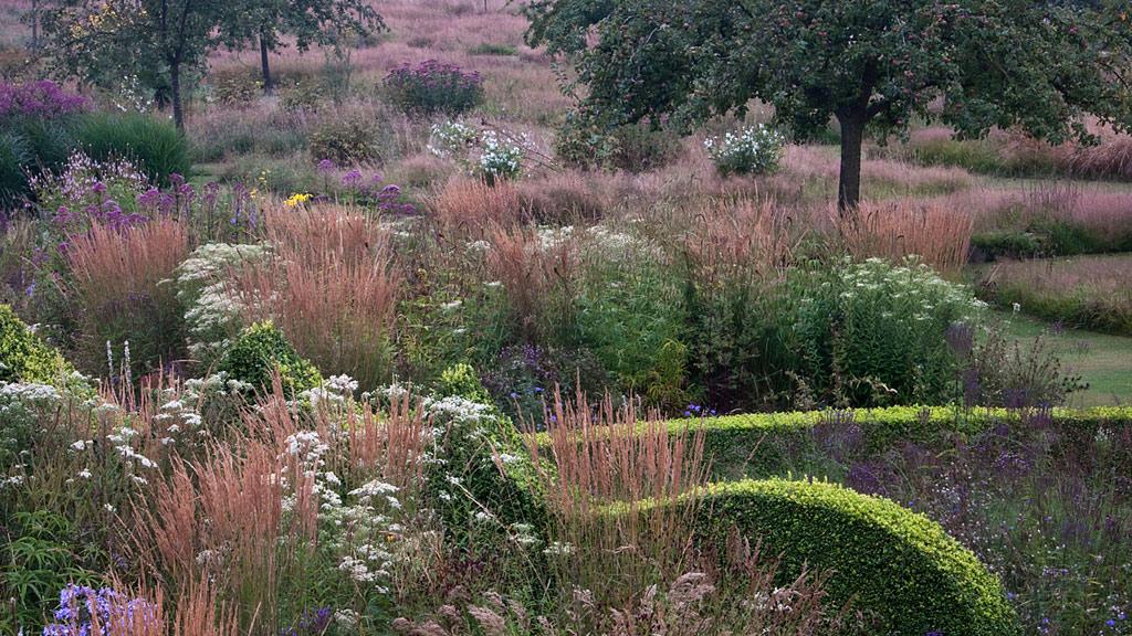le jardin plume - Le Jardin