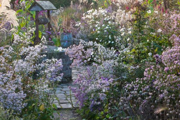 Well, Le Jardin Plume