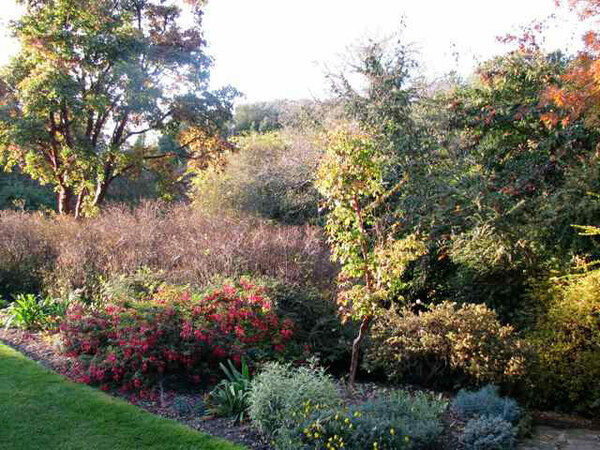 Highdown Gardens, October 2009