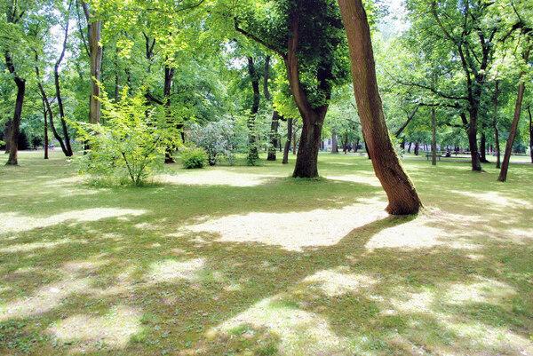 Erlangen Schlossgarten, Germany
