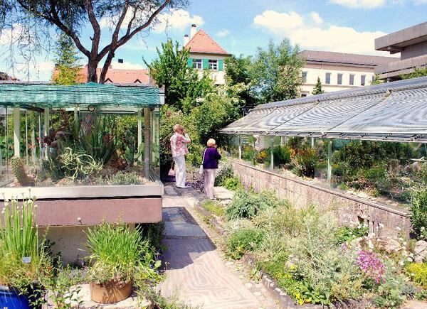 Erlangen Botanic Garden, Germany