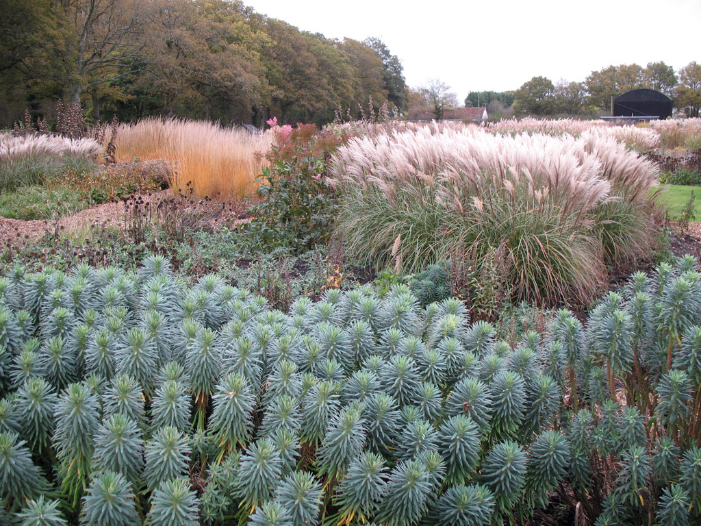 Sussex Prairie Garden, November