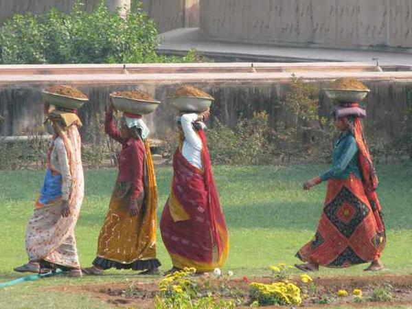Deeg Palace Gardens, 2009