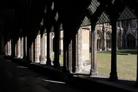 Medium canterbury cathedral cloister garden original