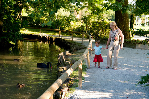 Pond, Arboretum Volčji Potok